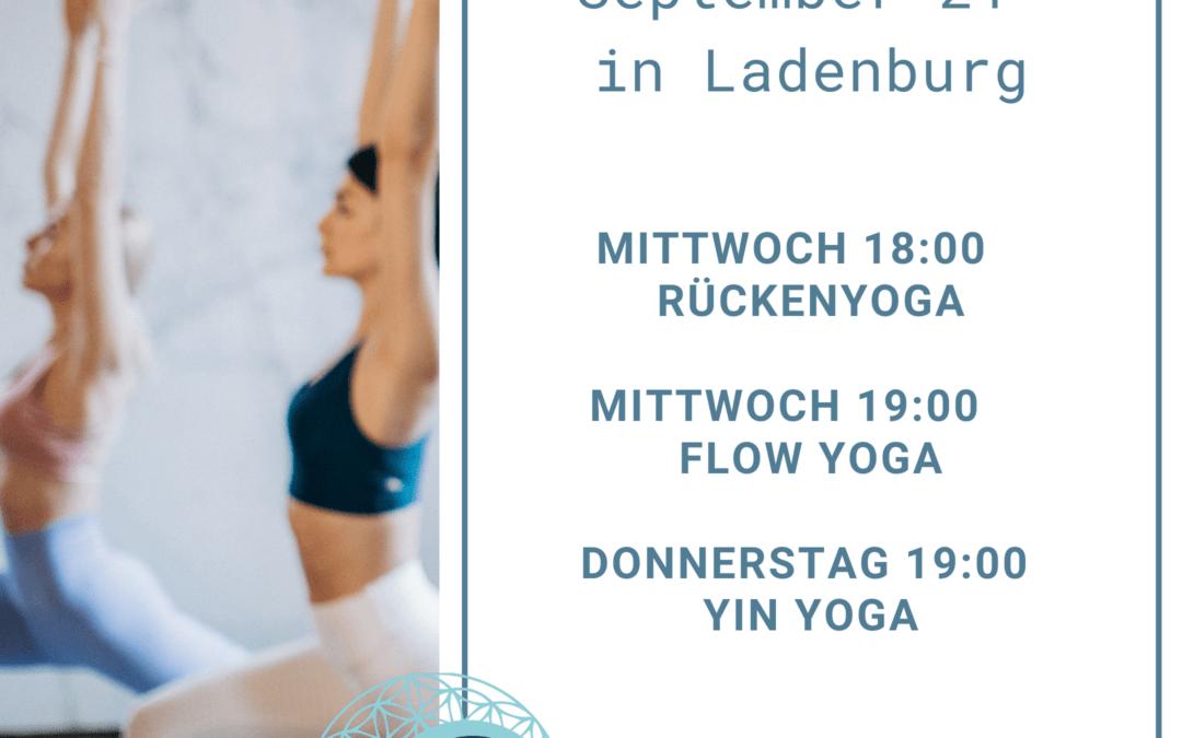 Neue Yoga Kurse in Ladenburg